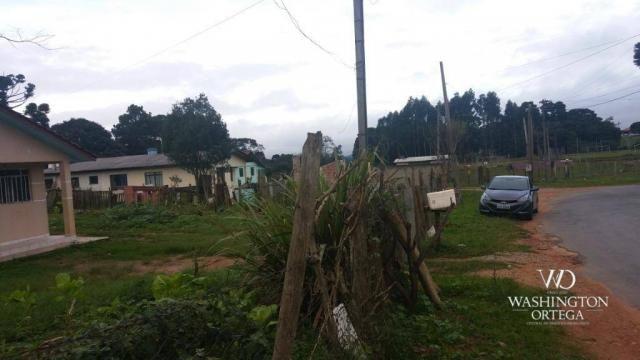 Terreno à venda, 1062 m² por r$ 450.000,00 - borda do campo - são josé dos pinhais/pr - Foto 12