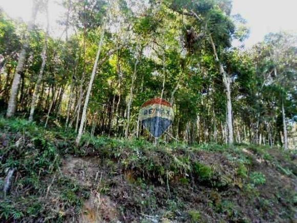 Terreno residencial à venda, Fazenda Boa Fé, Teresópolis. - Foto 6