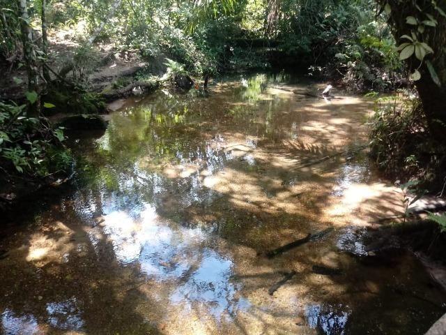 Fazenda de 784,77 hectares ha 140 km de Cuiabá em Rosário Oeste MT - Foto 6