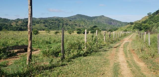 Fazenda 20 alqueires em São Jose Safira / MG - Foto 12