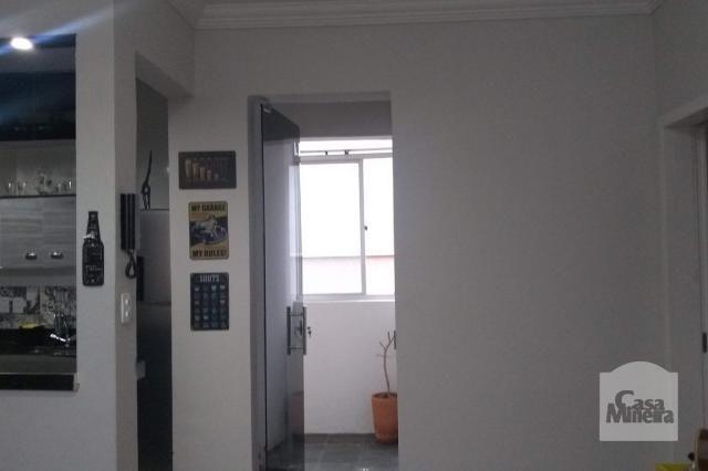 Apartamento à venda com 2 dormitórios em Alto barroca, Belo horizonte cod:257722 - Foto 7