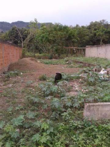 Otimo terreno no Rio da Prata de Campo Grande - Foto 4