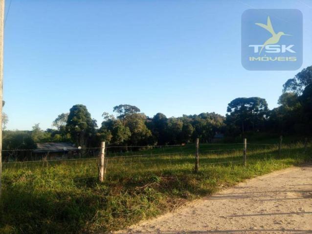 CH0386 - Chácara à venda, 6050 m² por R$ 130.000 - Zona Rural - Quitandinha/PR - Foto 17