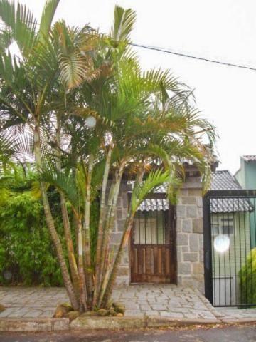 Casa à venda com 5 dormitórios em Vila jardim, Porto alegre cod:GS2572 - Foto 5