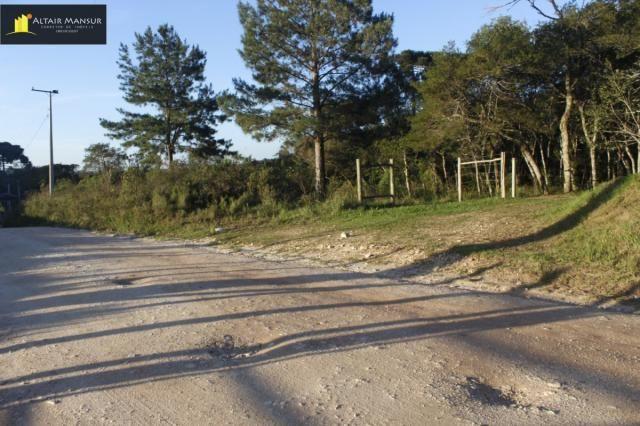 Terreno para Venda em Lagoa Tijucas do Sul-PR - Foto 18