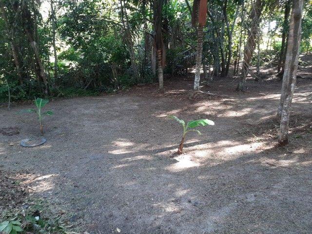 Vendo terreno no Bela Vista ( puraquequara ) - Foto 2