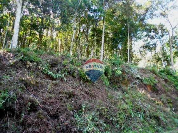 Terreno residencial à venda, Fazenda Boa Fé, Teresópolis. - Foto 7