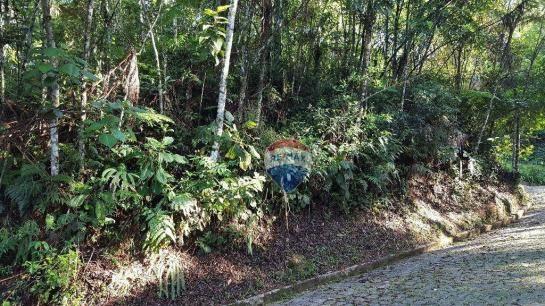 Terreno residencial à venda, Carlos Guinle, Teresópolis - TE0017.