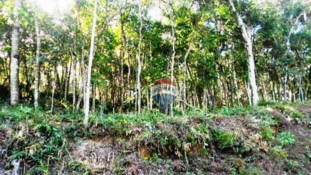 Terreno residencial à venda, Fazenda Boa Fé, Teresópolis. - Foto 18