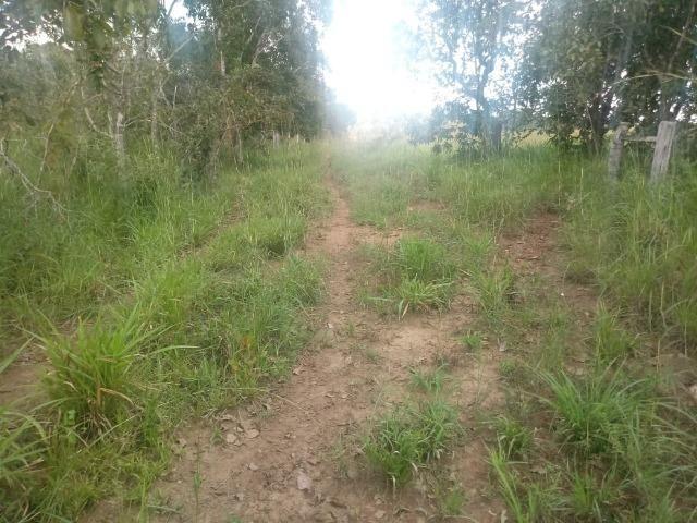 Fazenda de 784,77 hectares ha 140 km de Cuiabá em Rosário Oeste MT - Foto 9