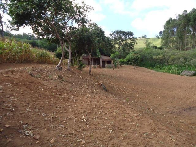 226B/Fazendinha de 15 ha com terras extraordinárias - grande oportunidade - Foto 14