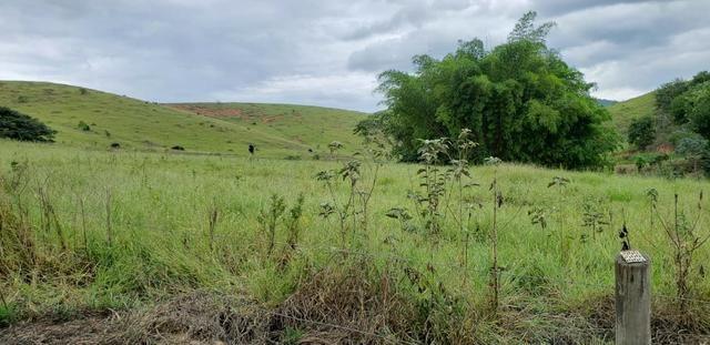 Fazenda 12 alqueires em Governador Valadares/MG - Foto 4