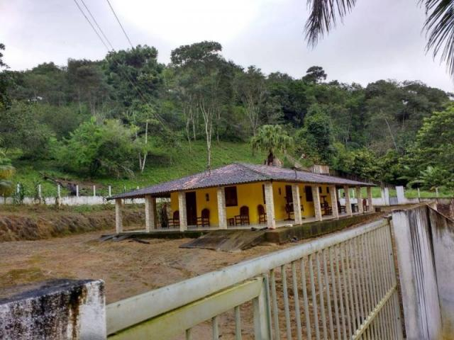 Fazenda para venda em maraial, maraial - Foto 3