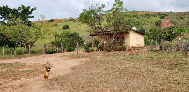 Fazenda 12 alqueires em Governador Valadares/MG - Foto 12