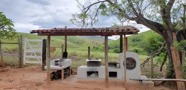 Fazenda 12 alqueires em Governador Valadares/MG - Foto 9