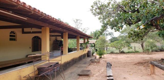 Fazenda 12 alqueires em Governador Valadares/MG - Foto 17