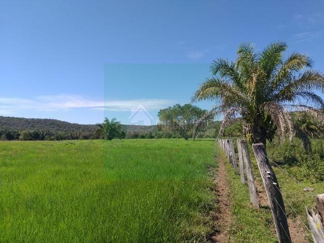 Sitio com 40 hectares em mimoso MT