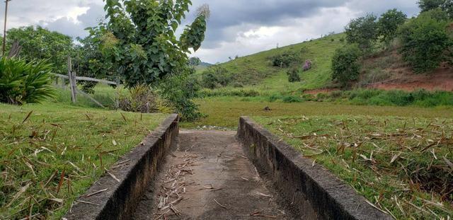 Fazenda 12 alqueires em Governador Valadares/MG - Foto 20