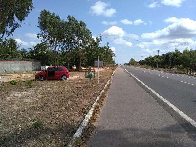 Terreno na baixa da carnaúba no km16 Parnaíba PI - Foto 7