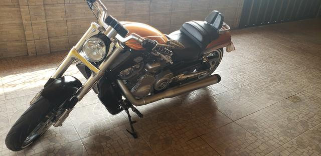 Harley Davidson V-Rod Muscle 1250 cc