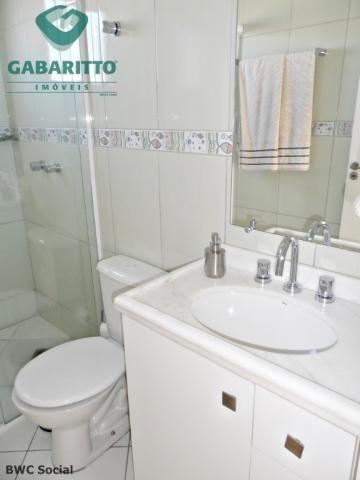 Apartamento para alugar com 2 dormitórios em Ipe, Sao jose dos pinhais cod:00318.001 - Foto 19