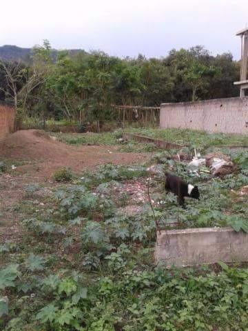 Otimo terreno no Rio da Prata de Campo Grande - Foto 3