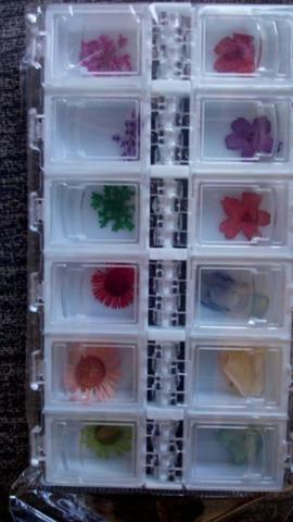 Promoção Flores Secas Para Encapsulamento de Unhas