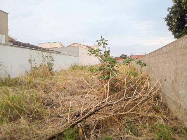 Terreno à venda, 300 m² por R$ 250.000,00 - Odília - Rio Verde/GO - Foto 5