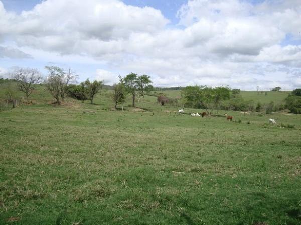 Realize seu sonho e adquira já sua propriedade rural ou urbana - Foto 4