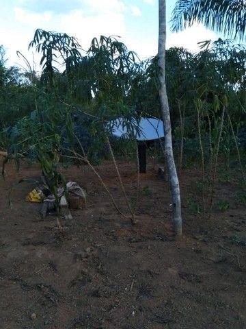 vende uma chácara de 2 hectares em Rio Branco-AC - Foto 9