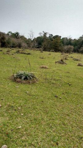Campo e mato em Bossoroca - Foto 7