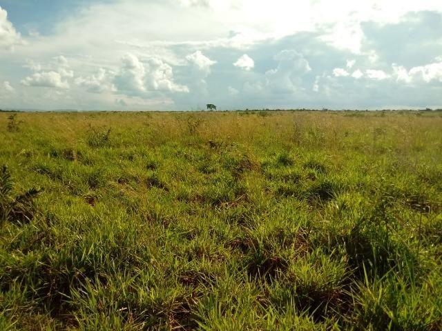 Fazenda em Rosário Oeste ha 140 km de Cuiabá - Foto 14