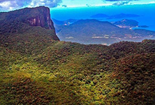 Ubatuba SP - Mata Atlântica   Área Comp. Ambiental, Parque, APP, Santuário, 715 alqueires - Foto 6