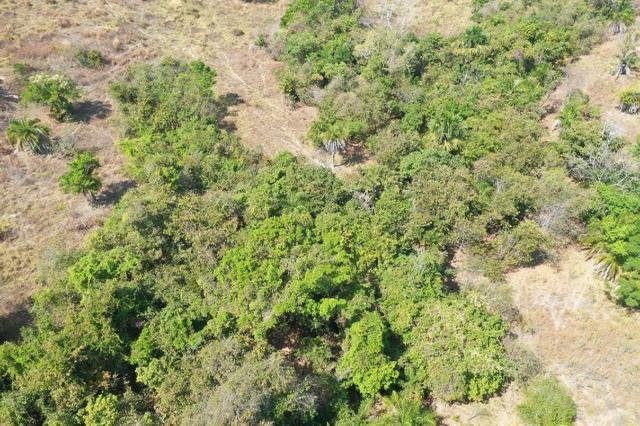 Fazenda no município de faina-GO! 24 Alqueires! - Foto 12