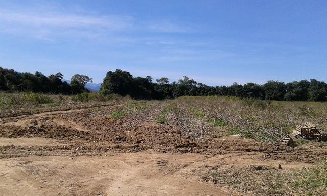 Vendo fazenda com 32 alqueres - Foto 4