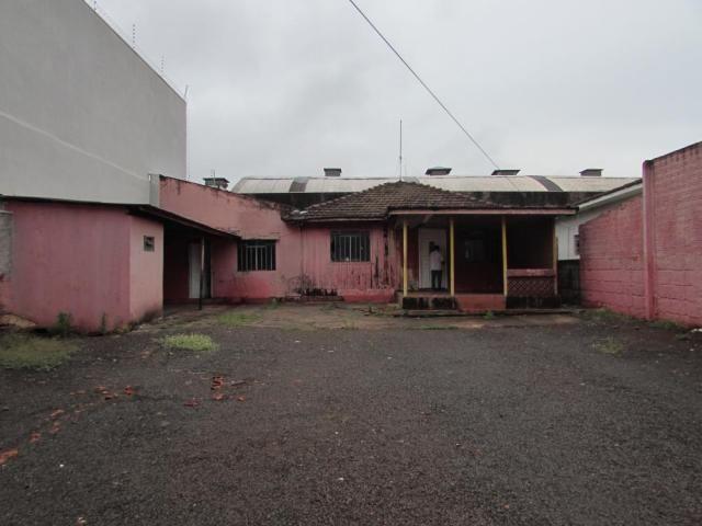 Terreno para alugar em Vila operaria, Maringa cod:L2696 - Foto 3