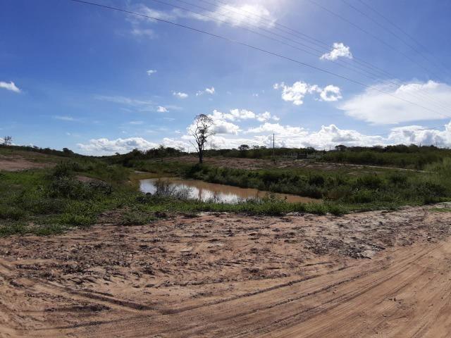 Gravatá - 1.000 m² - Na Beira da lagoa - É Um Sonho! - Foto 2