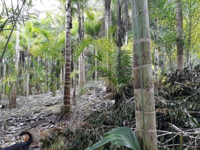 Linda chácara 3.000² a 7 km do trevo de Fazenda do Estado e 15km de Pedra Azul D.M.!! - Foto 15