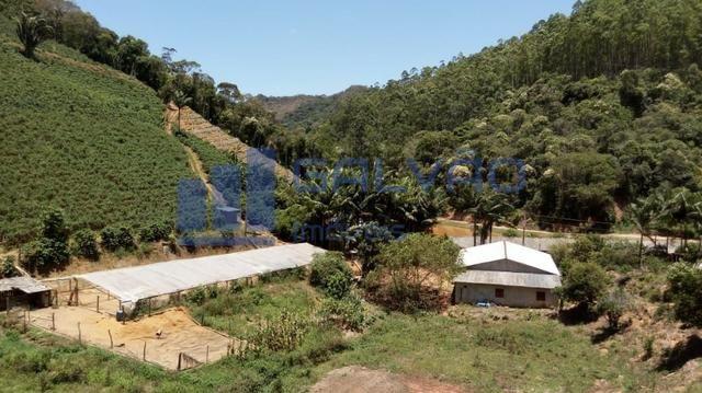 JG. Sítio de 234 mil m² com casa de 3 quartos com suíte em Marechal Floriano! - Foto 7