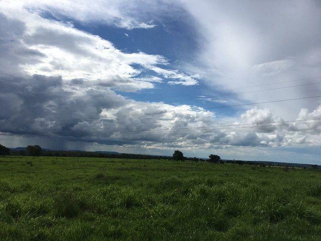 Fazenda 95 Alqueires | 130 km Rio Verde | oport. Única  - Foto 6