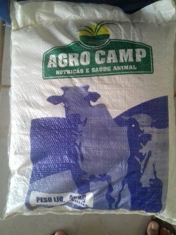 Sal Mineral Agrocamp