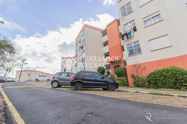 Apartamento para alugar com 2 dormitórios em Santa tereza, Porto alegre cod:274567 - Foto 2