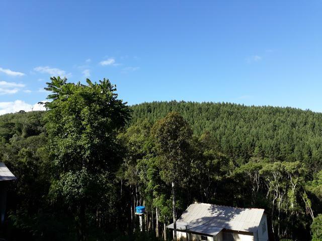 TORRANDO !!! LINDA CHÁCARA de 2.500m2° EM BOCAIUVA - Foto 15