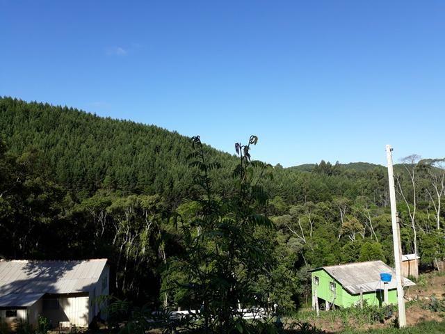 TORRANDO !!! LINDA CHÁCARA de 2.500m2° EM BOCAIUVA - Foto 18