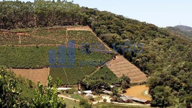 JG. Sítio de 234 mil m² com casa de 3 quartos com suíte em Marechal Floriano! - Foto 5