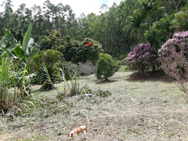 Linda chácara 3.000² a 7 km do trevo de Fazenda do Estado e 15km de Pedra Azul D.M.!! - Foto 18