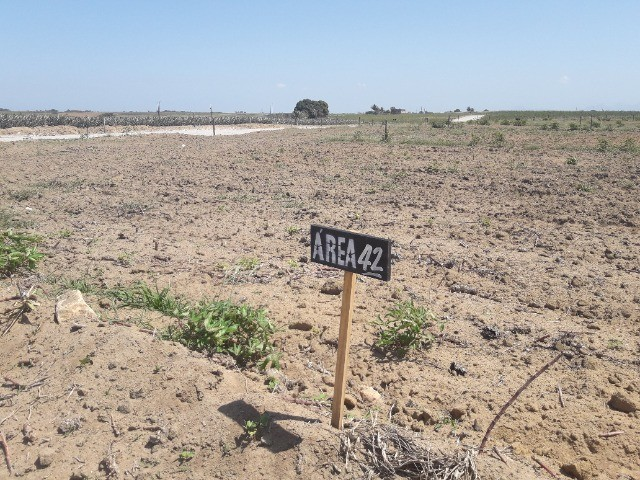 Oportunidade: Terreno em Lagoa Dantas - Marataízes - Foto 2