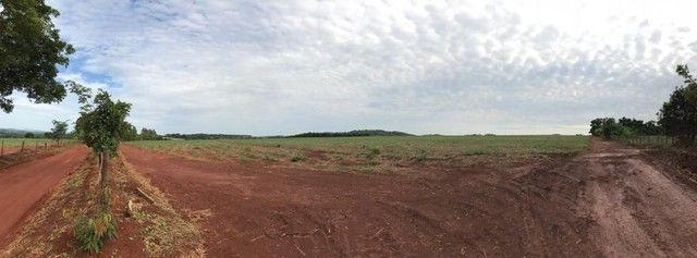 Fazenda Brazabrantes 12 alq. Planos ! - Foto 4