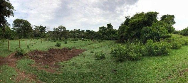 Fazenda Brazabrantes 12 alq. Planos ! - Foto 11