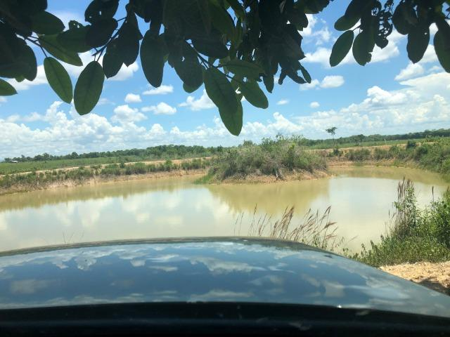 300 hectares, Cuiabá, 220 Hectares pasto, 23 km Atacadão, perto BR 364 - Foto 4